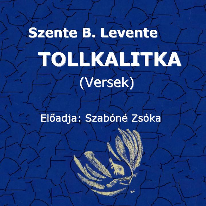 Szente B. Levente: Tollkalitka (versek) (Előadja: Szabóné Zsóka)