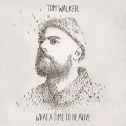 Tom Walker - Now You're Gone